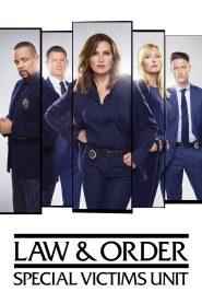 Prawo i porządek: Sekcja specjalna